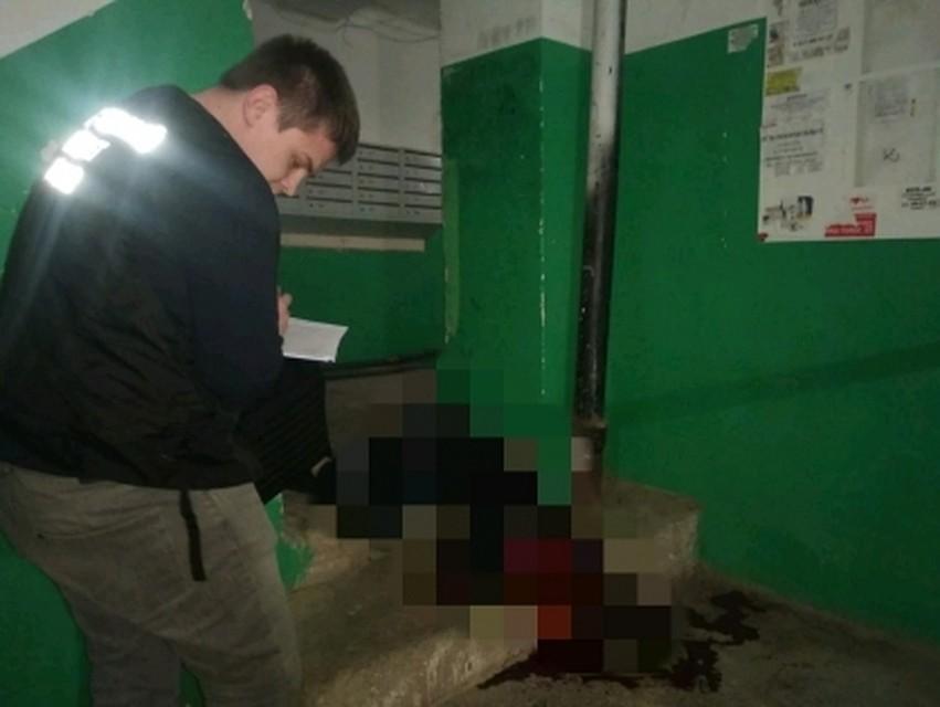 саратовский студент убил катю громову
