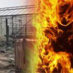 8 человек сгорели заживо в деревне Нестерово