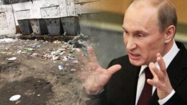 мусорные баки и путин владимир